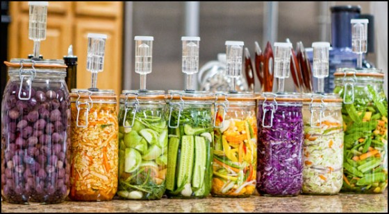 fermentation food jars