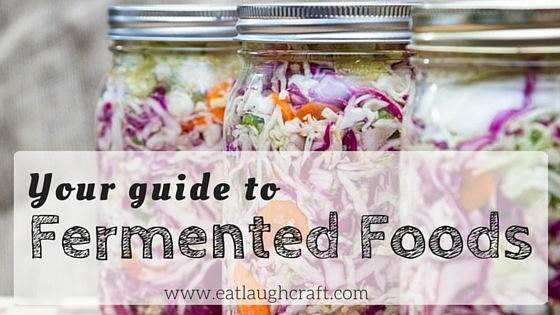 Fermented Food Basics Blog Header