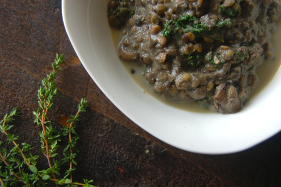Creamy Lentil Stew 8