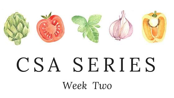 CSA SERIES week 2